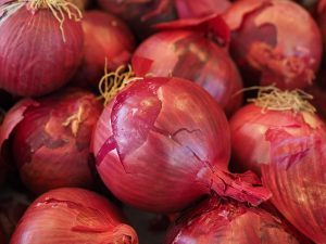 Indian Onion Prices Peak - Express Trade Capital